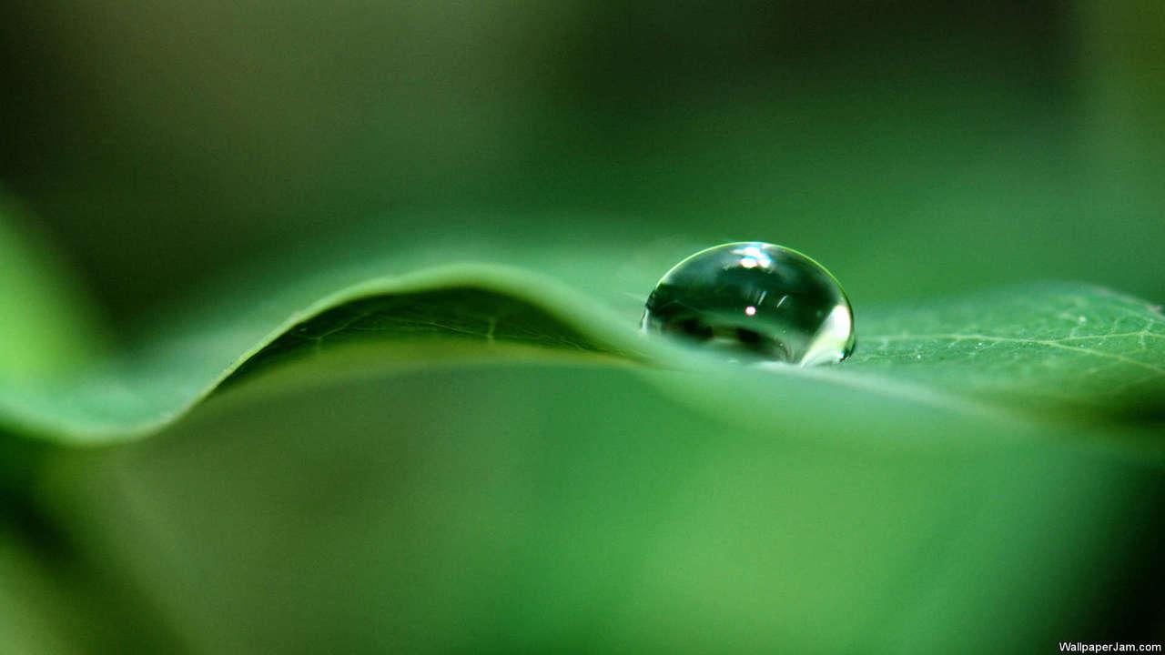 Water Drops HD Screensaver Image 2